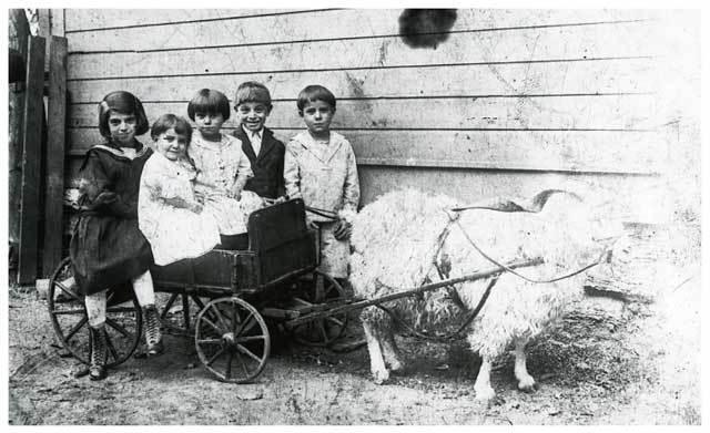 "Goat cart and children on ""Railroad Island"""