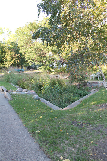 Maria Bates Rain Garden