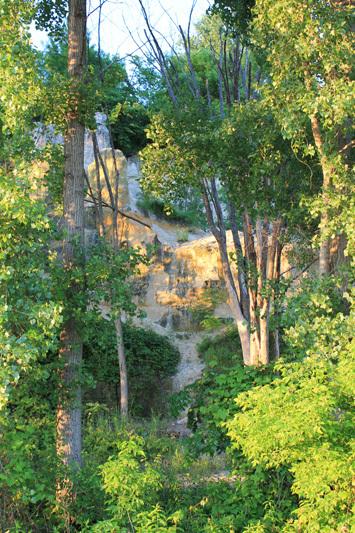 Bruce Vento Nature Sanctuary
